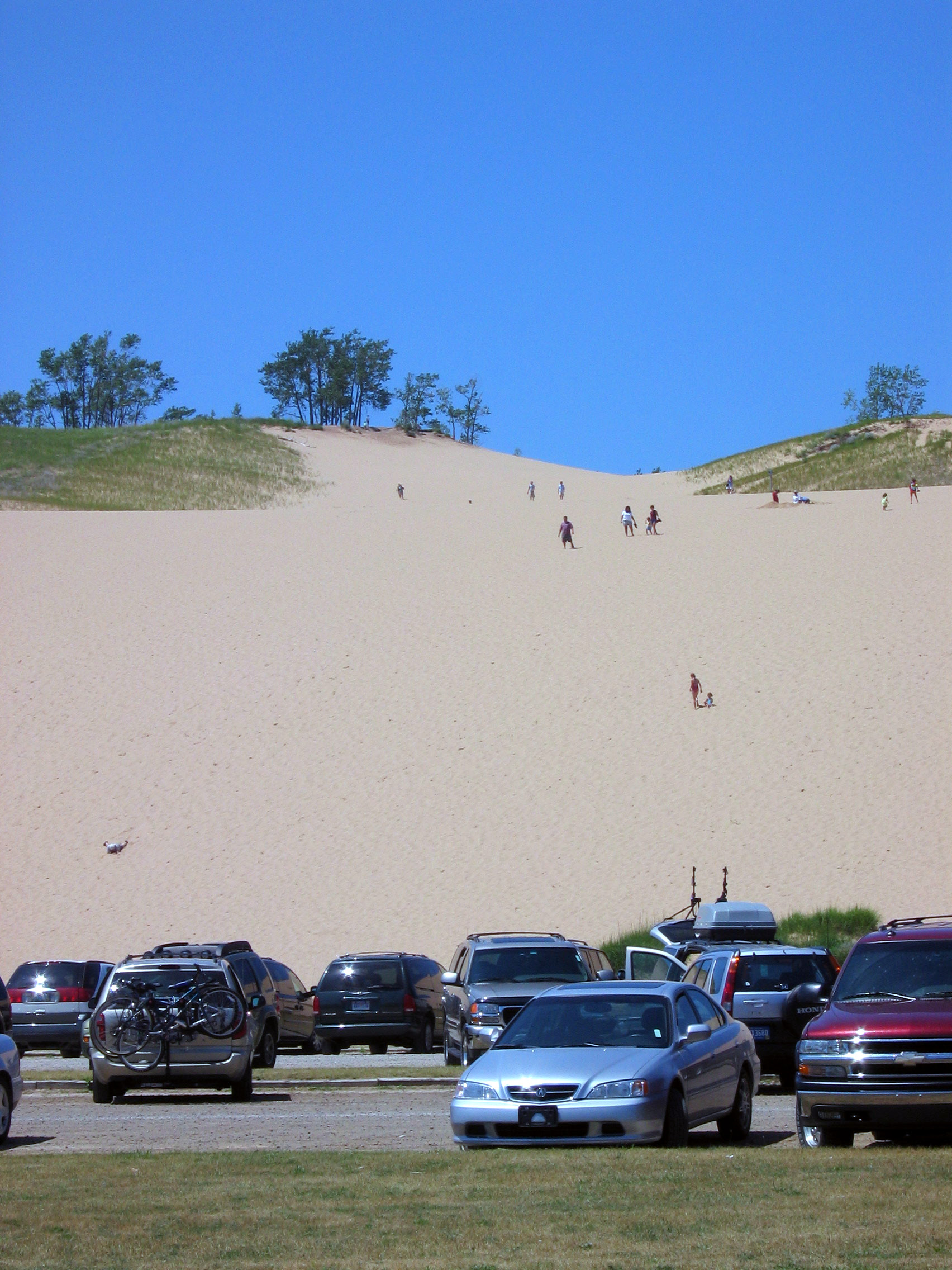 Looking up from the Climbing Dunes