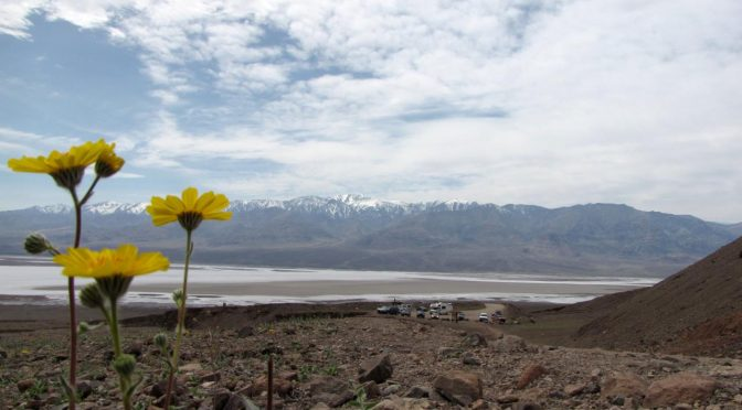 Mondays are for Memories – Death Valley – Second Day